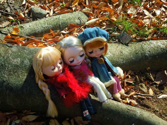 秋の公園5