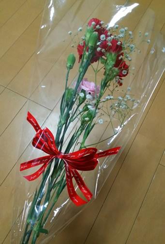 carnation5.jpg