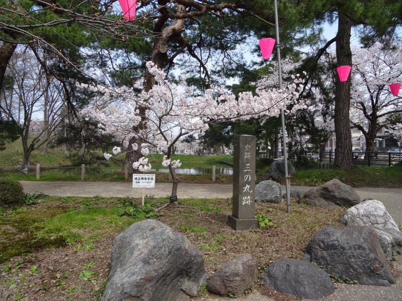 高田公園5