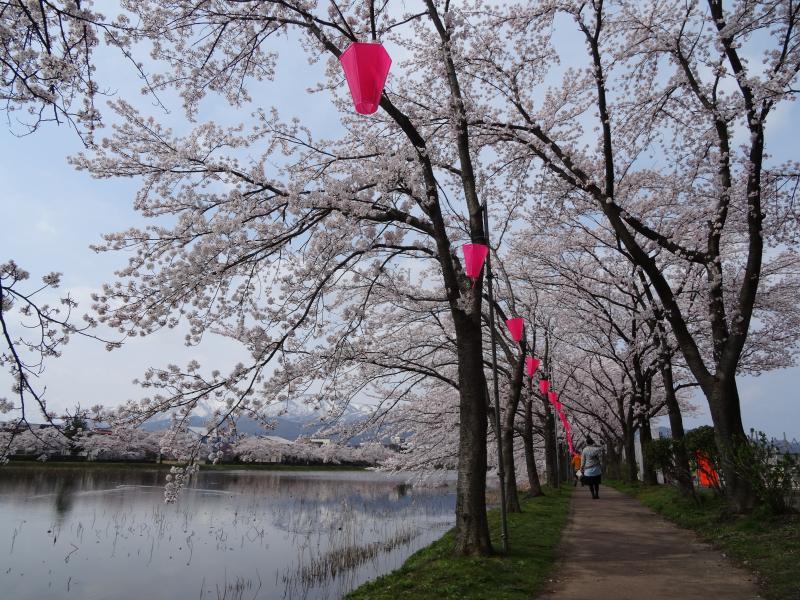 高田公園10