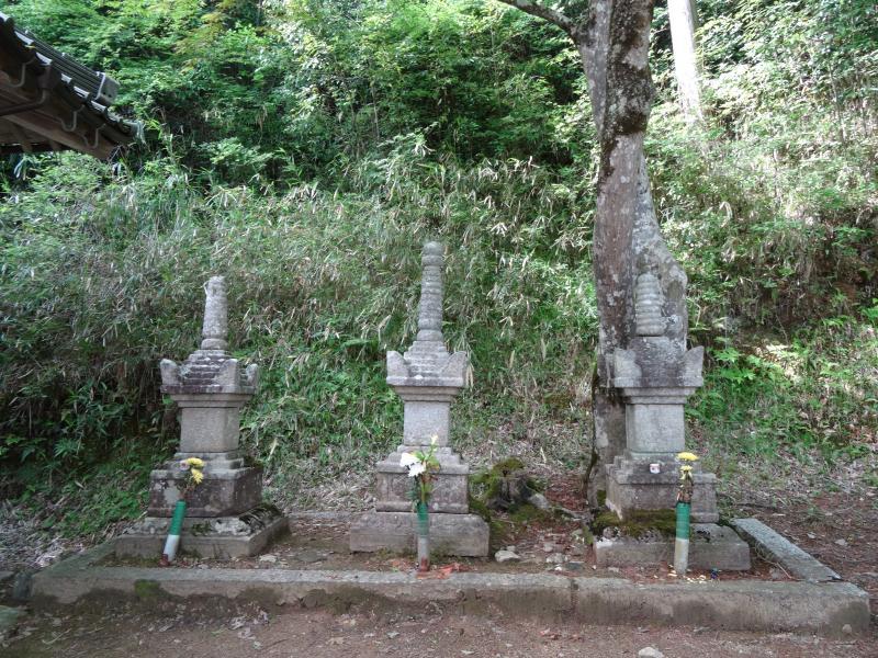 安国寺11