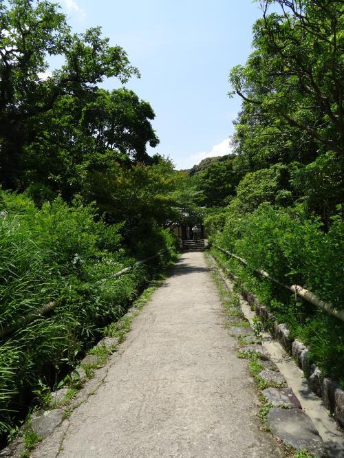 浄瑠璃寺1