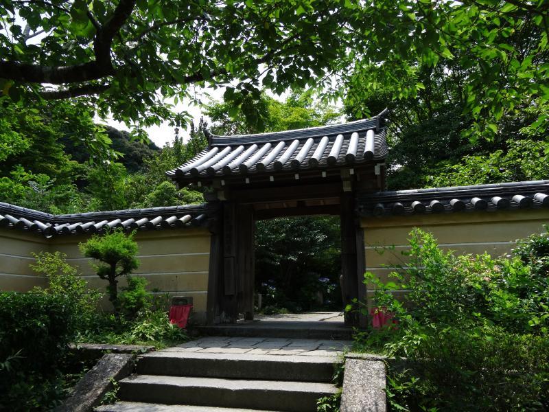 浄瑠璃寺4