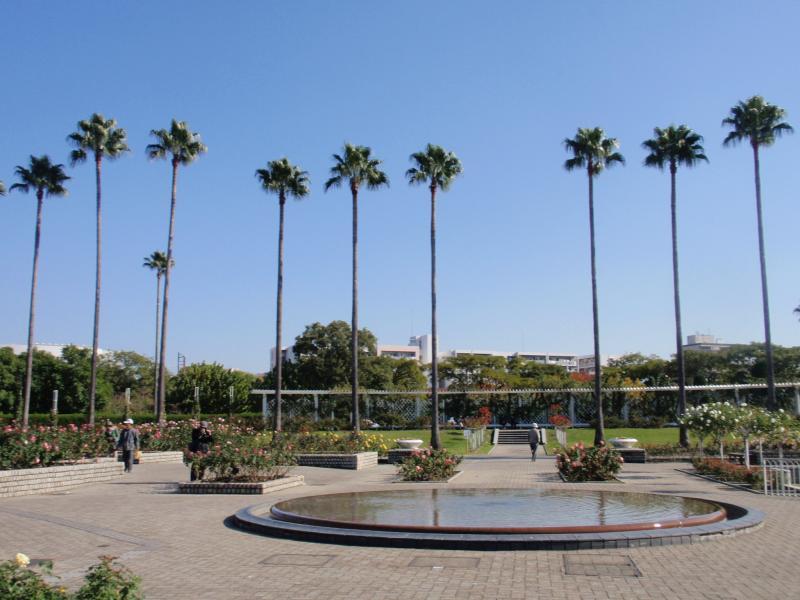 長居植物園1