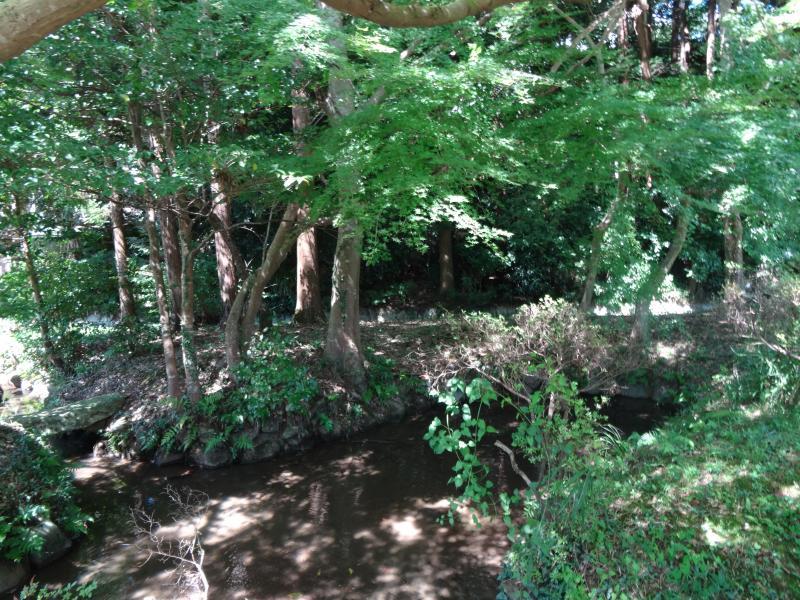 奥石神社3