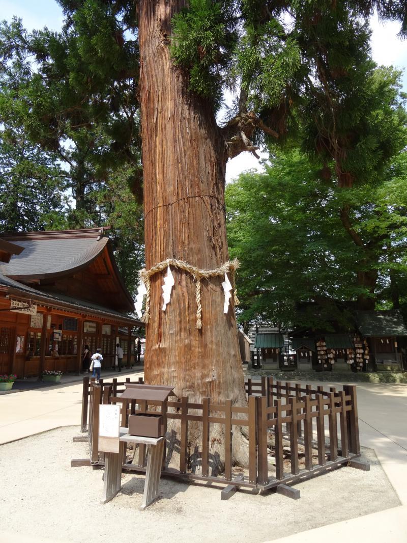 穂高神社7