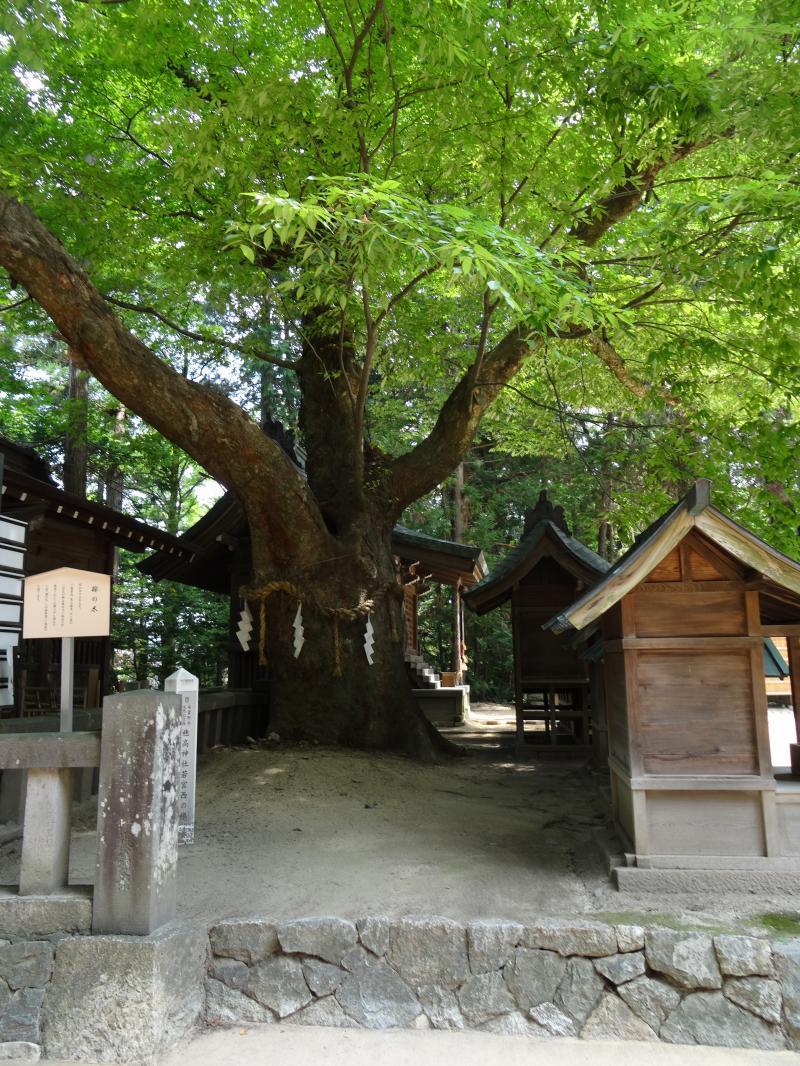 穂高神社9