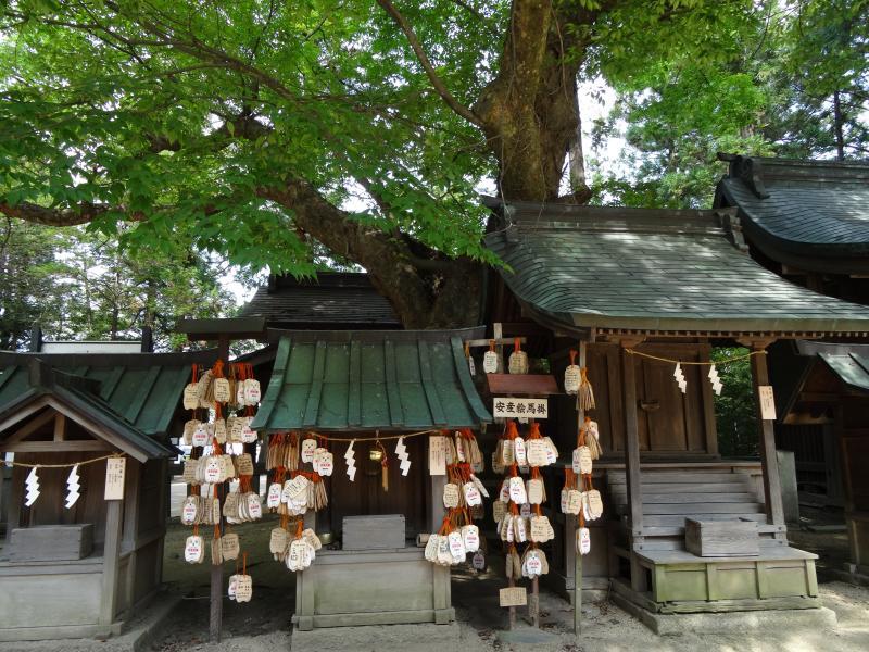 穂高神社10