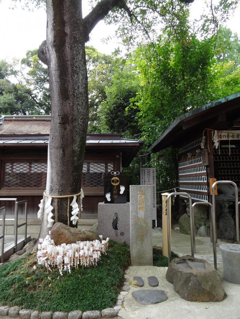 護王神社7