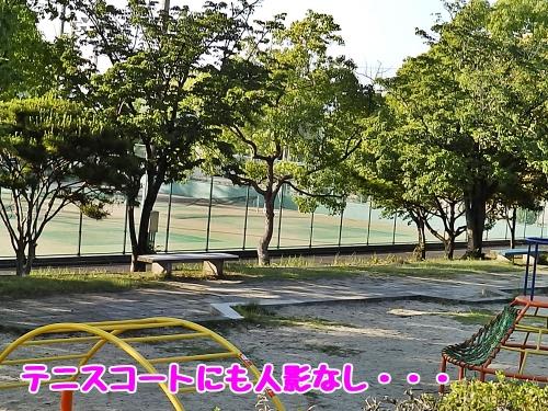 テニスコートも