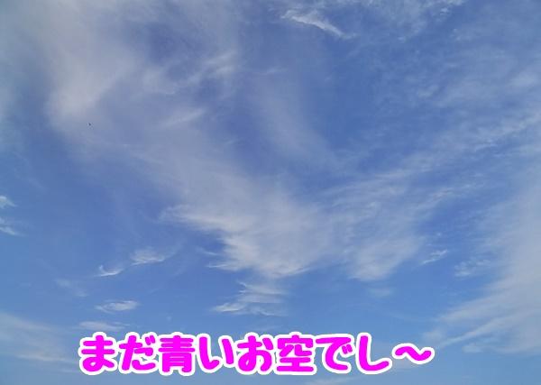 まだ青いお空でし