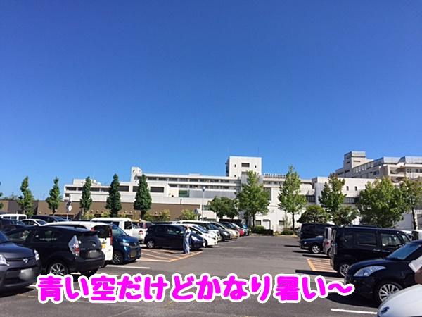 青い空だけど暑い