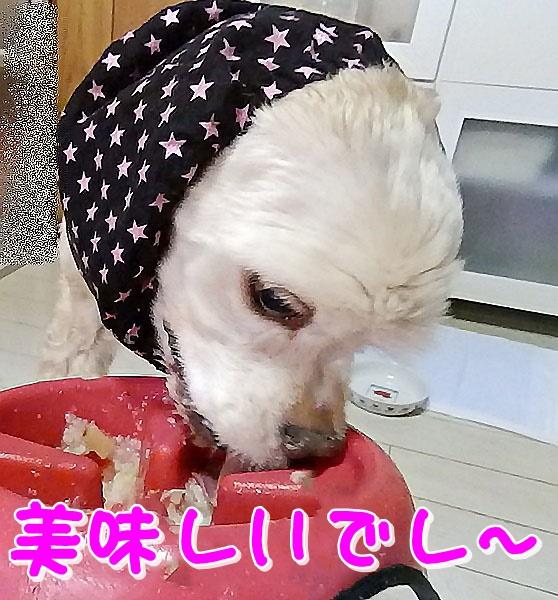 汚い食べ方
