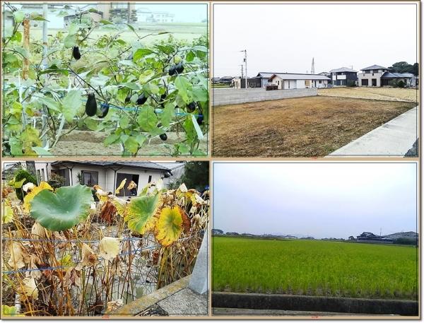 田舎の風景3