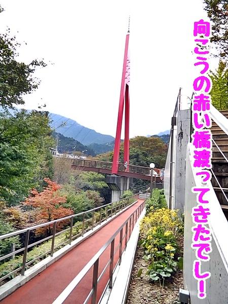 向こうの赤い橋