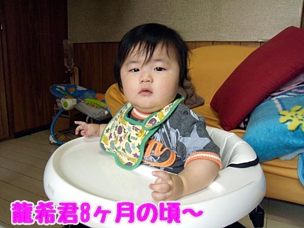 龍希8ヶ月