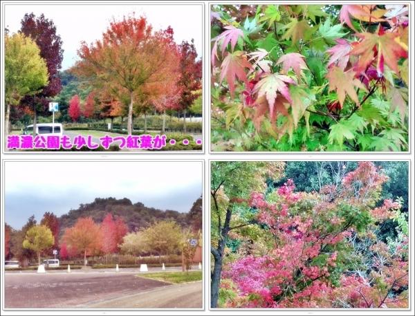 満濃公園の秋
