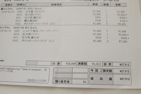 DSC_8777.jpg
