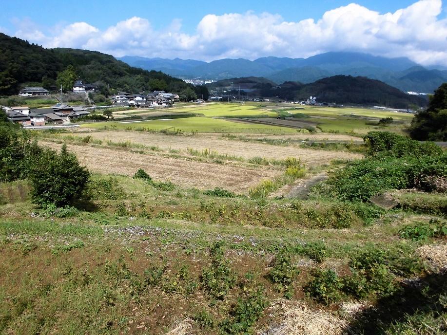 里山風景20161017