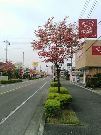 福島店画像