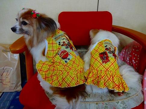 ジュラちゃんレモンちゃん♪