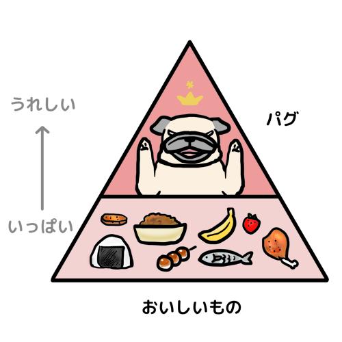 生態系ピラミッド02