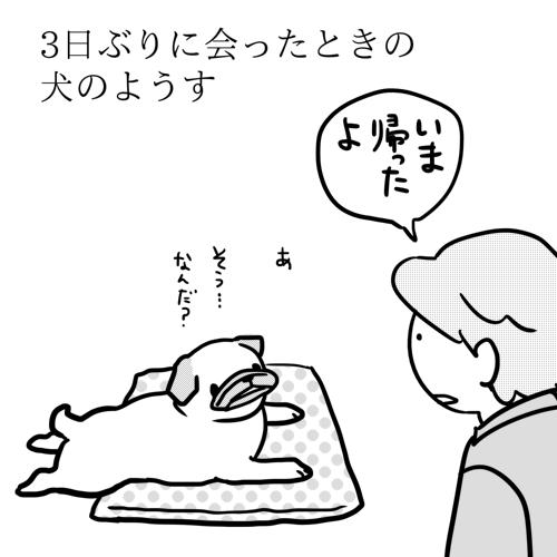 i021.png