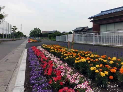 籠原駅界隈_06
