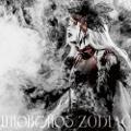 uroboros_zodiac.jpg
