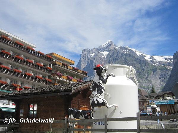 スイスの牛