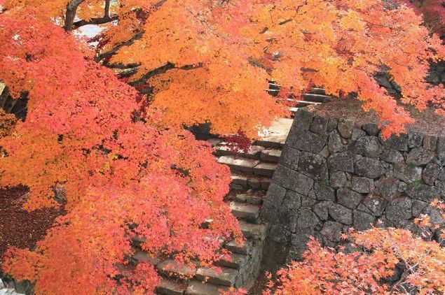 紅葉の津山城