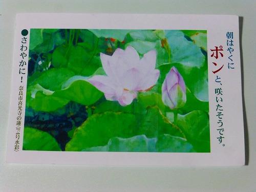 s-P1350007.jpg