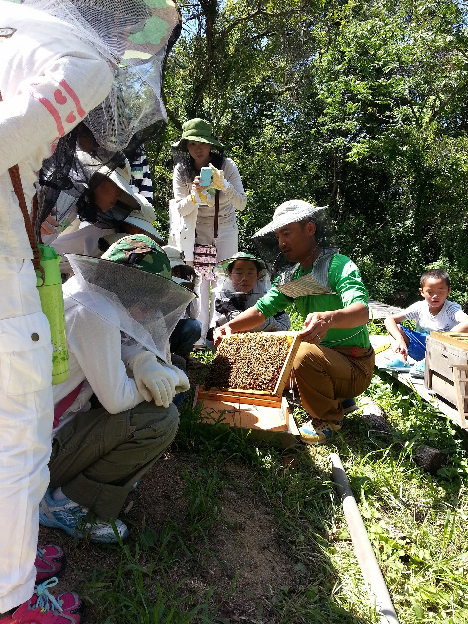 ミツバチ教室②