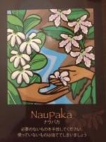 ナウパカ(ハワイの小さな可憐な花)