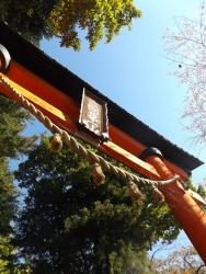 20161104富士浅間神社4