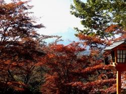 20161104富士浅間神社6