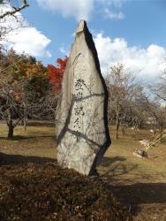 20161104富士宮紅葉まつり10