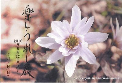 20160622-0703 楽しうれし展 DM-2