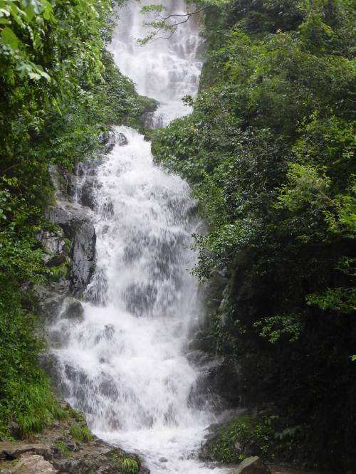 花と滝 12