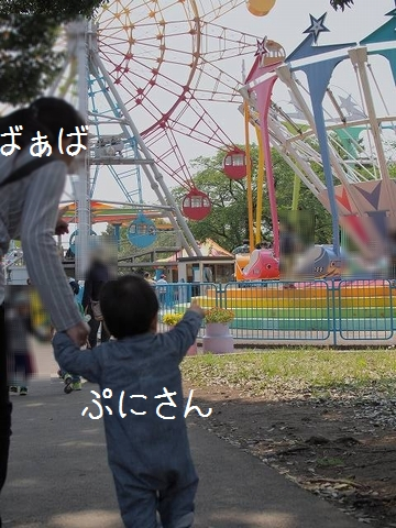 P5010332.jpg