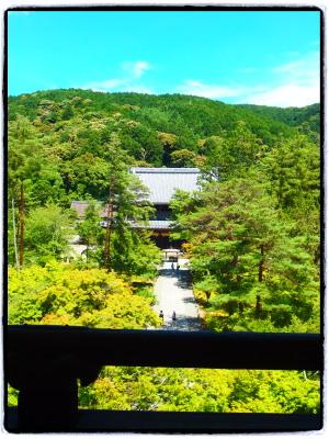 南禅寺山門に上る。