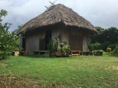 藁葺きの家