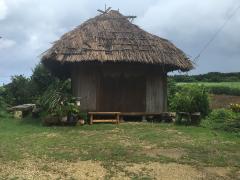 藁葺きの家2