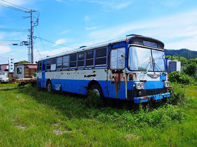 P7160289s-.jpg