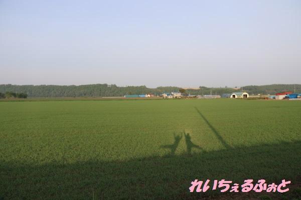 DPP_10795.jpg