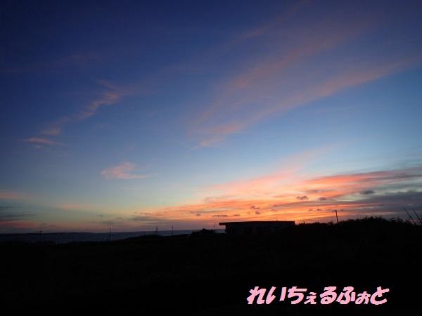 DPP_11098.jpg