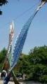 碑文谷公園2