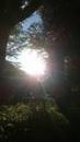 梅雨入りの日の夕陽