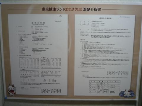 P1250790.jpg