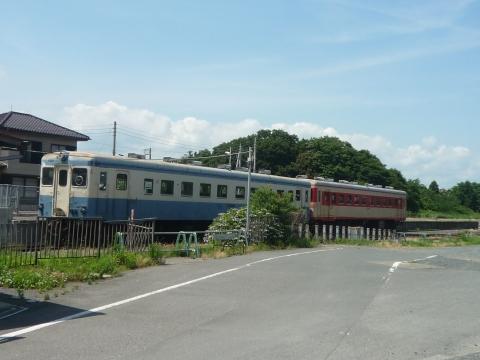 P1290096.jpg